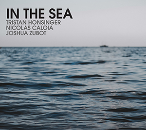 In the Sea- Cd Cover for sale